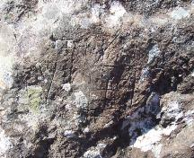 Inscriptions on eastern side of Rock with 17th and 18th Century Graffiti, Kingman's Cove, Fermeuse, NL. Photo taken May 2006.; HFNL/Andrea O'Brien 2006