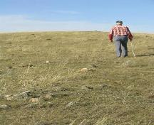 Looking along a line of fieldstones that forms the south spoke of the medicine wheel, 2004.; Government of Saskatchewan, Marvin Thomas, 2004.