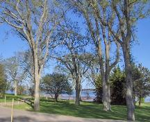 Showing mature trees with Hillsborough River in the distance; City of Charlottetown, Natalie Munn, 2007