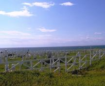 View looking northwest of the Old Anglican Cemetery, Anchor Point, NL. Photo taken Angust 2007.; Town of Anchor Point 2007