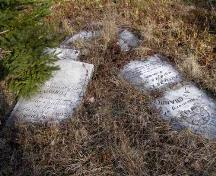 Grave markers for Isaac and Lucinda Chandler, early settlers in Greenville, in the African Bethel Cemetery, Greenville, Yarmouth, NS, 2008.; Heritage Division, NS Dept. of Tourism, Culture and Heritage, 2008