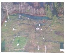 An aerial view of the Free Will Baptist Cemetery, Beaver River, Municipality of the District of Yarmouth, NS, 2006.  Note the outline of the church foundation in the left foreground.; Old Beaver River/ Port Maitland Cemeteries Preservation Society, 2006