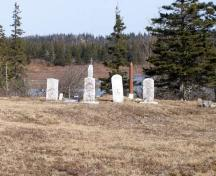 A row of headstones in the Free Will Baptist Cemetery, Beaver River, Yarmouth County, NS, 2008.; Heritage Division, NS Dept. of Tourism, Culture and Heritage, 2008
