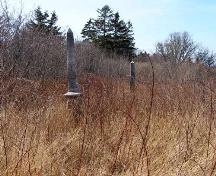 Other monuments in an area yet to be cleared in the Calvinist Baptist Cemetery, Port Maitland, Yarmouth County, NS, 2008.; Heritage Division, NS Dept. of Tourism, Culture and Heritage, 2008