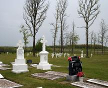 View of gravemarkers in the Overstoneville Independent Cemetery, Tolstoi area, 2006; Historic Resources Branch, Manitoba Culture, Heritage and Tourism, 2006
