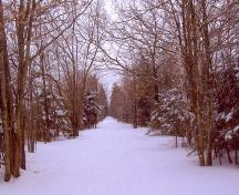 Showing lane in winter; Alberton Historical Preservation Foundation, 2007