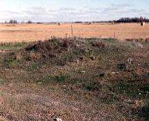 View of Linear Mounds National Historic Site of Canada, showing the uninterrupted views of the mounds and surrounding prairie, 1996.; Agence Parcs Canada / Parks Canada Agency, 1996.