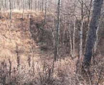 Whitecourt / Woodlands Meteorite Impact Crater (2007); Alberta Culture and Community Spirit, Historic Resources Management Branch