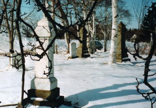 Showing overview of cemetery in winter