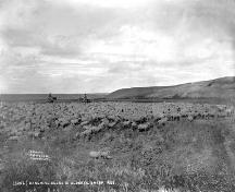 Cochrane Ranche Provincial Historic Resource (1883); Provincial Archives of Alberta, B.69