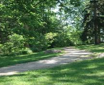 Featured is the park pathway near the main house at the Elsie Perrin Williams Estate.; Kendra Green, 2007.
