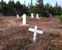 Photo of Salvation Army Cemetery, Arnold's Cove, NL, showing gravemarkers, 2008; Courtesy of Iris Brett, 2008
