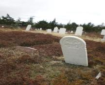 Photo of Second Anglican Cemetery, Arnold's Cove, NL, 2008; Courtesy of Iris Brett, 2008