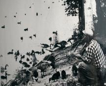 Harvey and waterfowl; Charlie and Dot Moore Collection
