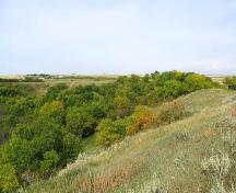 View northwest at site located in trees at foot of valley slope, 2004.; Government of Saskatchewan, Marvin Thomas, 2004.
