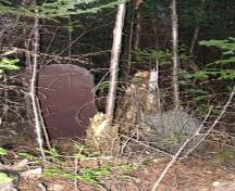 Photo of two headstones at Shoal Harbour Methodist Cemetery, Shoal Harbour, Clarenville, NL, circa 2007. ; Clarenville Heritage Society Inc. 2008