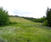 Looking west at site area in clearing to the middle and rear of photo, 2004.; Government of Saskatchewan, Marvin Thomas, 2004.