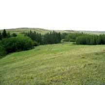Looking east at the site area located in front of, and to the right of evergreen trees, 2004.; Government of Saskatchewan, Marvin Thomas, 2004.