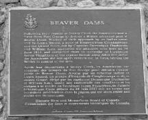 General view of the Battle of Beaver Dams, showing the plaque, 1989.; Parks Canada Agency / Agence Parcs Canada, 1989.