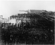 View of the Scottish Canadian Cannery with pilings in mid and foreground, Steveston, date uncertain; Richmond Archives photo no. 1977 1 242