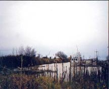 View of Scotch Pond in Steveston, Richmond, BC, 2001; Denise Cook Design 2004