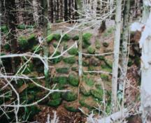 Showing remains of lime kiln with moss on stones; Province of PEI, Donna Collings, 2005