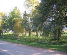 Showing cemetery amid trees near roadway; Province of PEI, Donna Collings, 2009