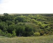 View of the site location on a terrace just below and to the right of the highest tree at the left of the photo, 2004.; Government of Saskatchewan, Marvin Thomas, 2004.