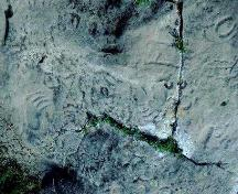 Close-up view of some of the precontact rock carvings, 1982.; Government of Saskatchewan, 1982.