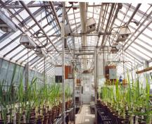 View of the interior of the Cereal Crops Building, showing the extant system of steam pipes and control mechanisms, which were responsible for maintaining controlled experimental conditions in the greenhouses, 1995.; Parks Canada Agency / Agence Parcs Canada, 1995.