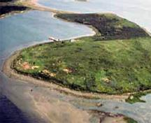 Aerial view of the western point of Grassy Island.; Parks Canada Agency / Agence Parcs Canada.