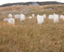 Exterior view of Old Anglican Cemetery, Cow Head, NL.; HFNL 2005